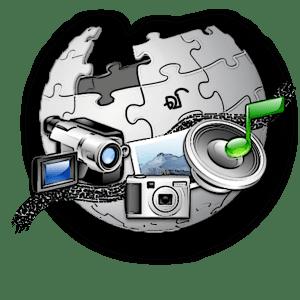 Logo of the TamilWiki Media Contest