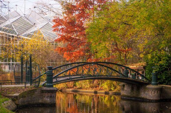 Hortus Botanicus Amsterdam, 1st place, Wiki Loves Monuments 2012, Netherlands