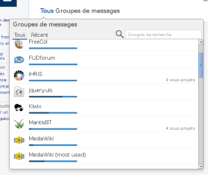 Message group selector. Message groups are groups of related translatable messages: a software project, a multilingual blog post or announcement, etc.