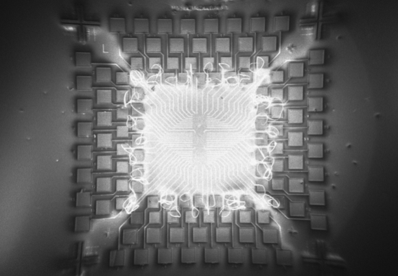 Microchip_for_Carbon_Nanotube_Field_Effect_Transistors_fabrication