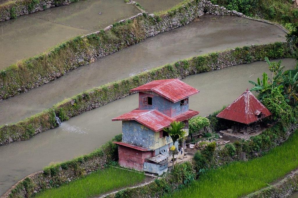 Banaue Philippines Batad Rice Terraces
